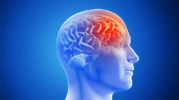 Cách massage giúp lưu thông máu não